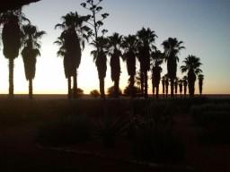 Sonnenaufgang gegen 5:30 Uhr lokal